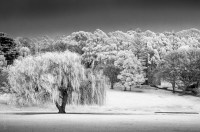 portarthur-tasmania-historic-site-infrared-24135